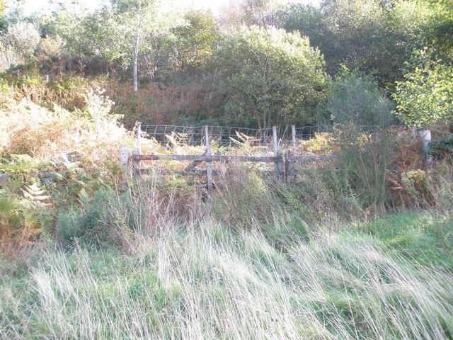 Gate at entrance to Barnauld Wood
