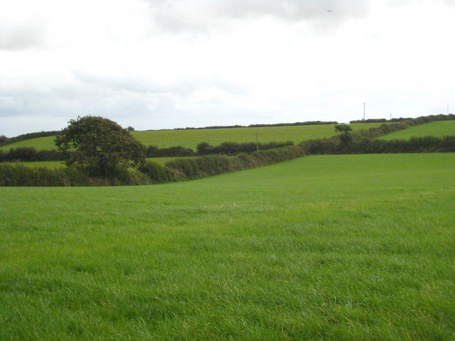 Fields at Hillhead Ladock