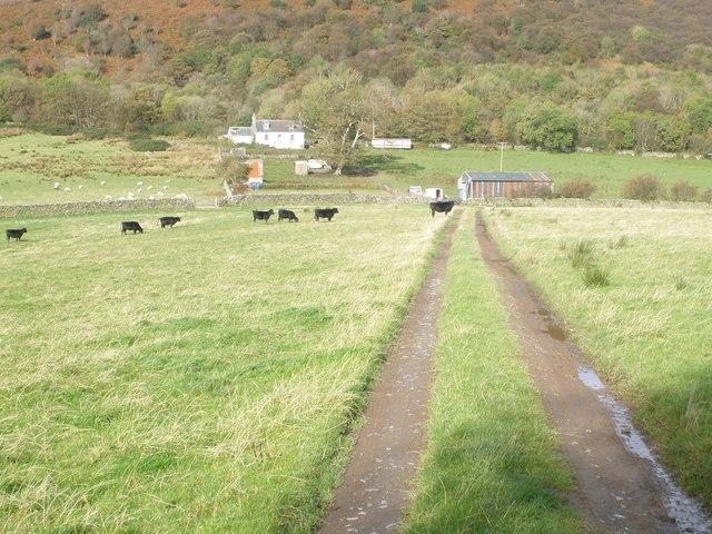 Track to Barmore Farm