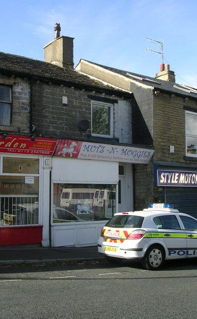 Mutz-N-Moggies - Richardshaw Lane