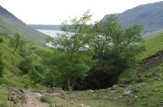Wastwater beyond the trees, Lingmell Gill