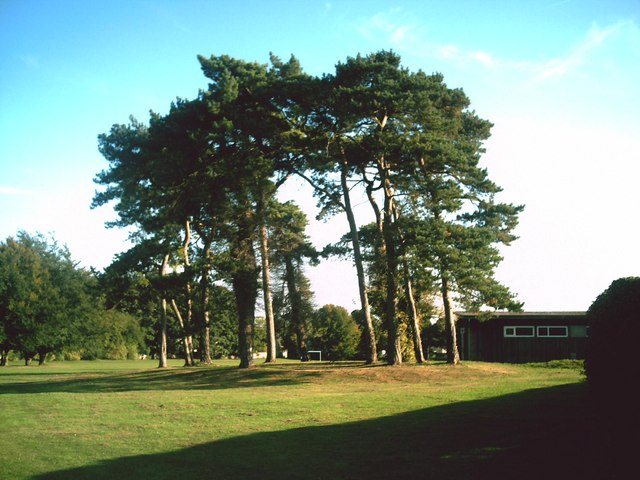 Clump of trees on Burford recreation ground