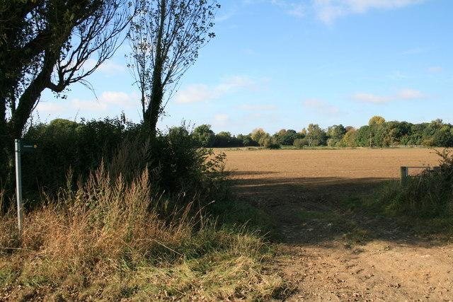 Footpath across the fields