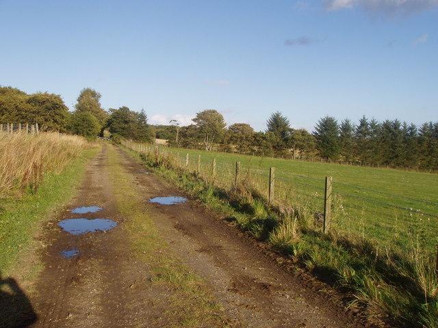 Track near Home Farm, Leith Hall, Kennethmont