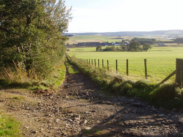 Track heading down through fields