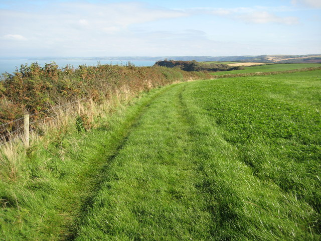 Coast path above Brownsham Cliff