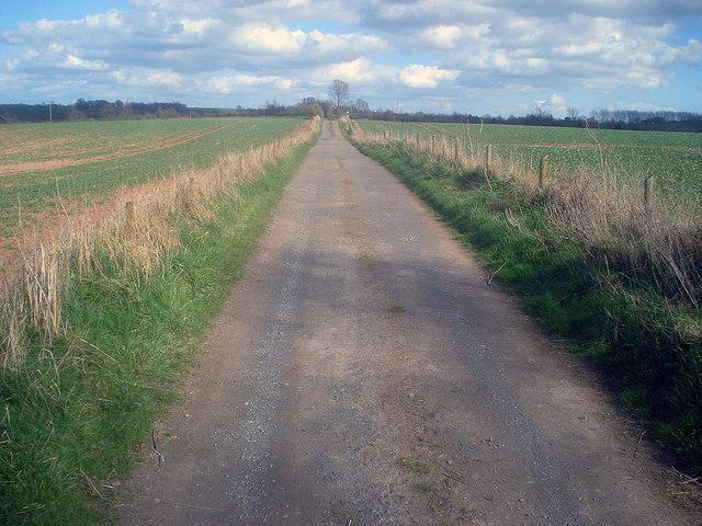 Lane to Marston Cottages