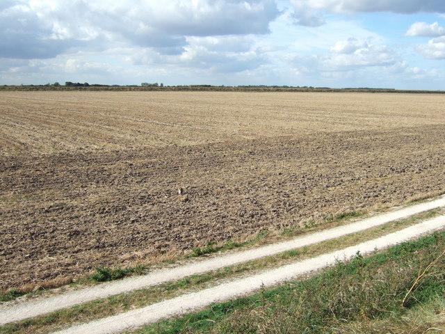 Farmland at Vinegar Middle, north of King's Lynn