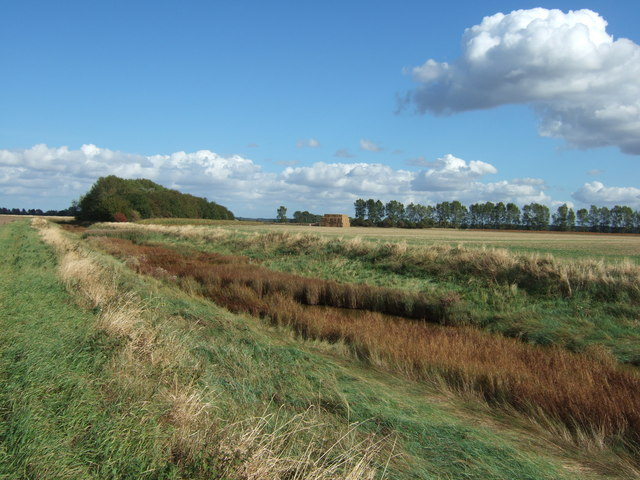 Drainage channel in Vinegar Middle north of King's Lynn