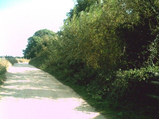 Footpath to Radcot Bridge