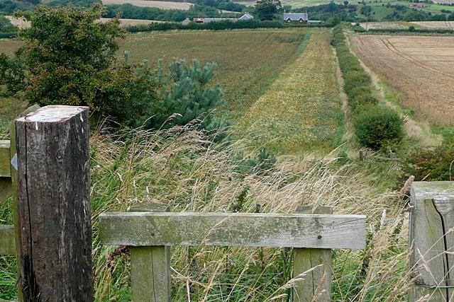 Footpath to Greenrigg