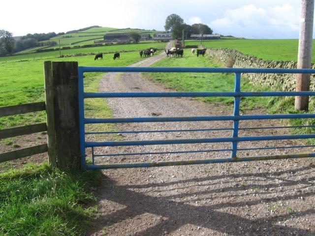 Footpath through Elmore Hill Farm