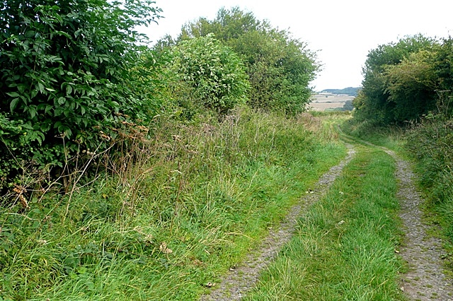 Byway towards Greenrigg