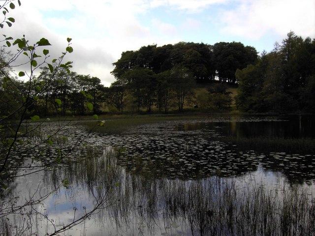 Loch Lurkie