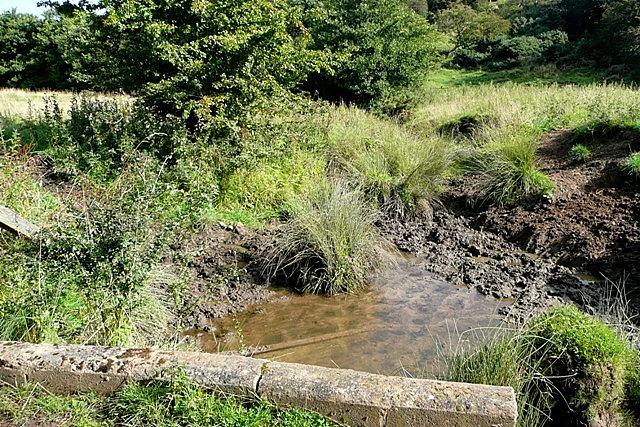 Ditch near Nabs Plantation