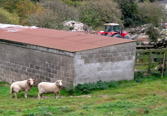 South Farm, Wold Newton
