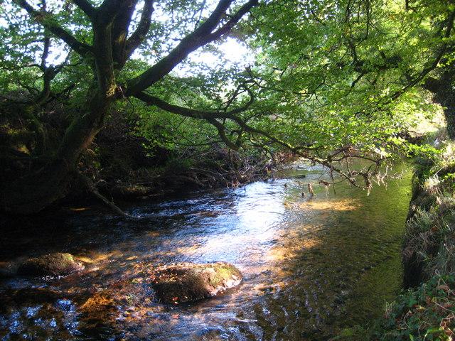 The River Fowey upstream from Trekeivesteps