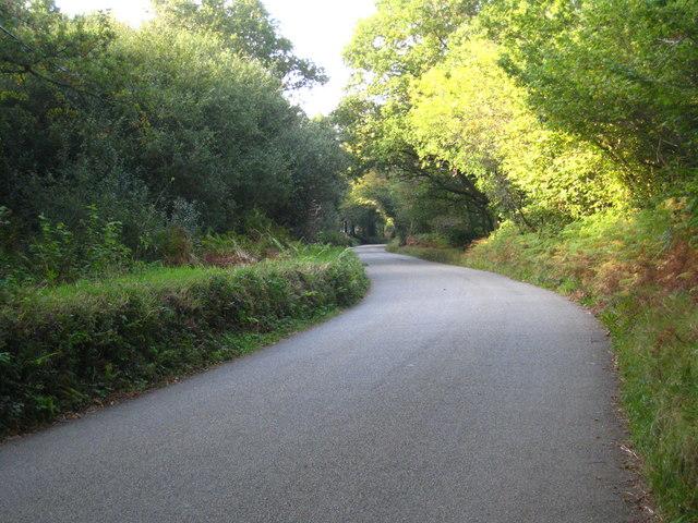 The Bolventor road north of Trekeivesteps