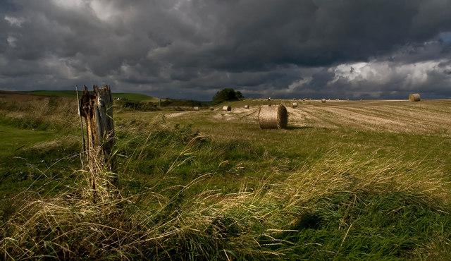 Farmland near Ardwell Mill