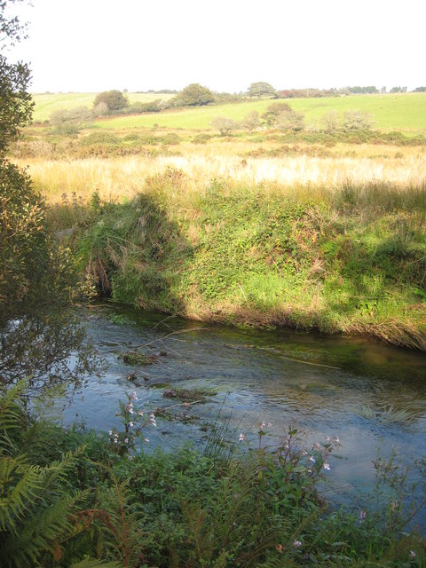 The River Fowey near Westerlake Farm