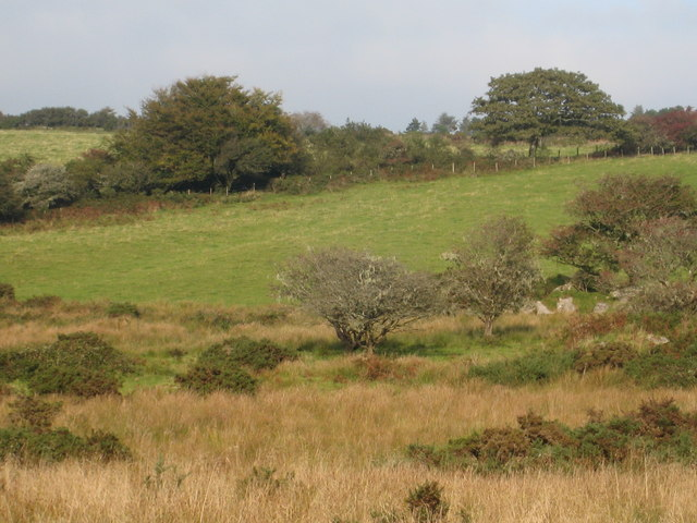Rough pasture beside the River Fowey