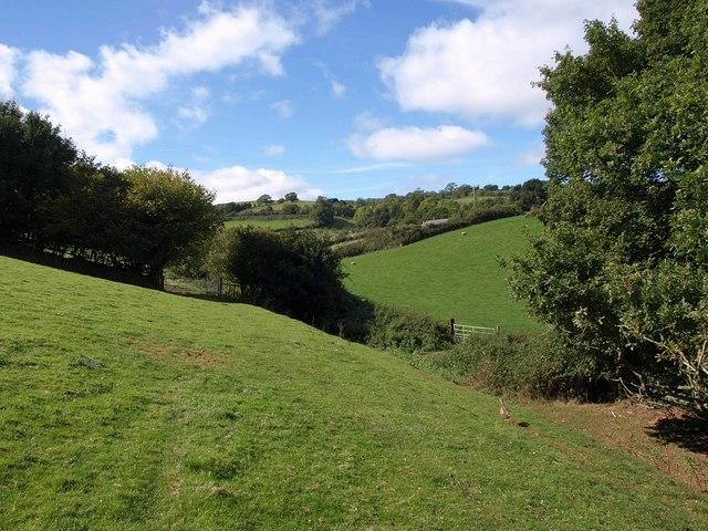 Footpath near Coate Farm