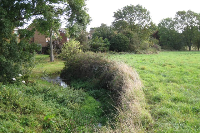 Fisher's Brook near Leafield Farm, Warwick
