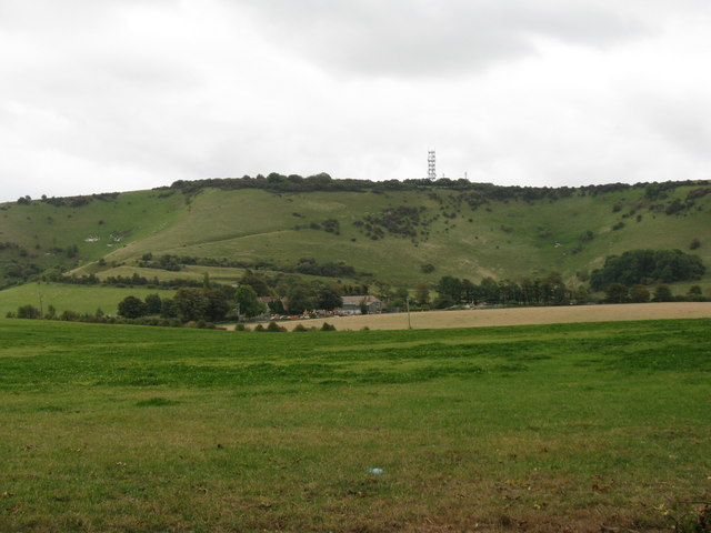 View south across pasture from Longlands Wood