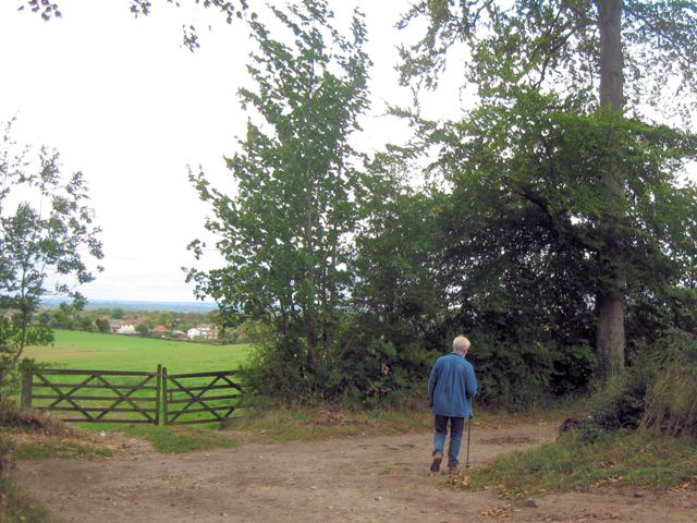 Walking by a farm gateway at Polesden Lacey