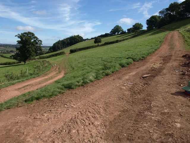 Path junction, Coate Barn