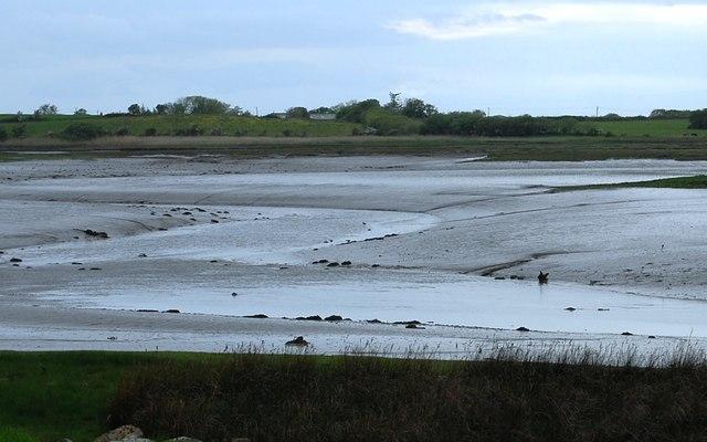 Mudflats & meanders, River Mite