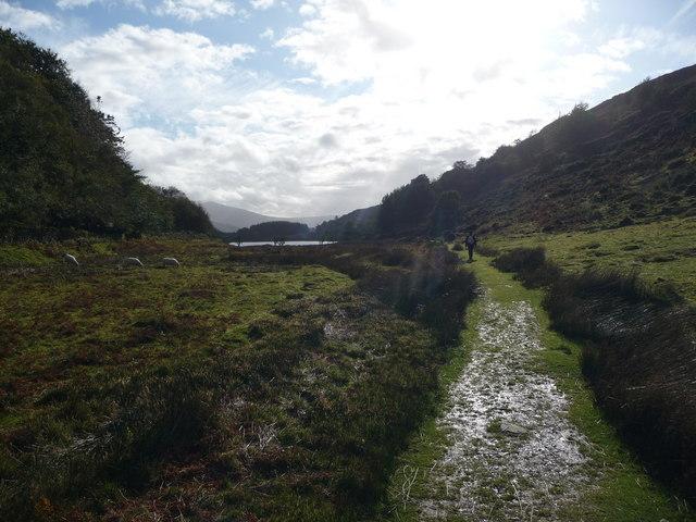 The path around Llyn Cynwch