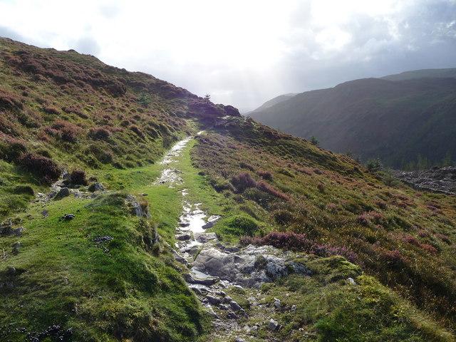 The start of the Precipice Walk proper on Foel Cynwch