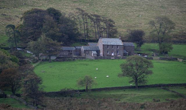 Dash Farm