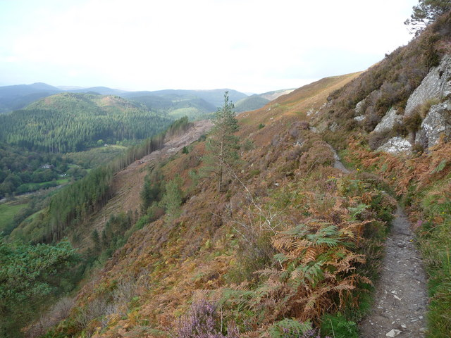 Part of the Precipice Walk, Foel Cynwch