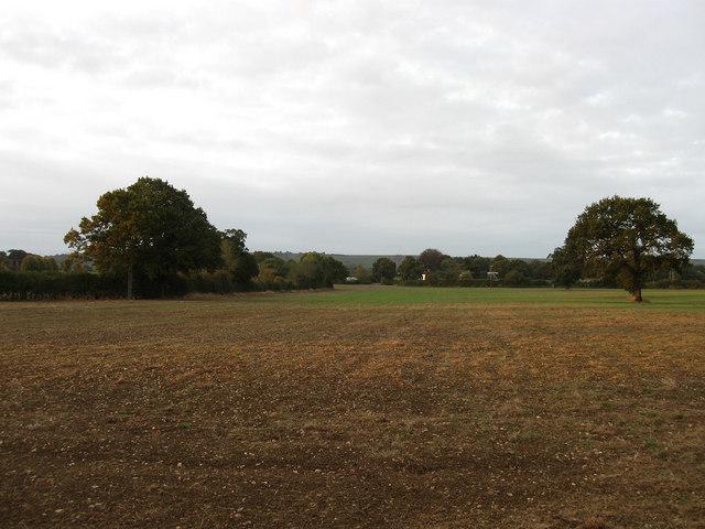 Brook Ground