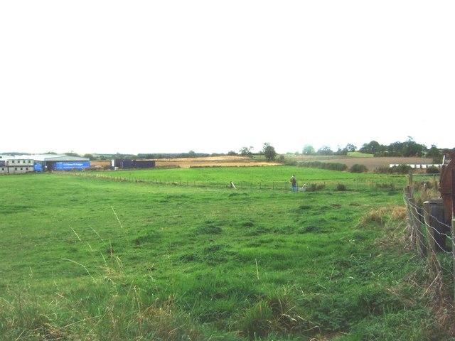 Farmland behind West Auckland Memorial Hall