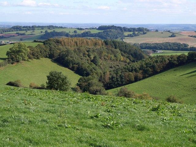 Woodland above Higher Nunnington Farm