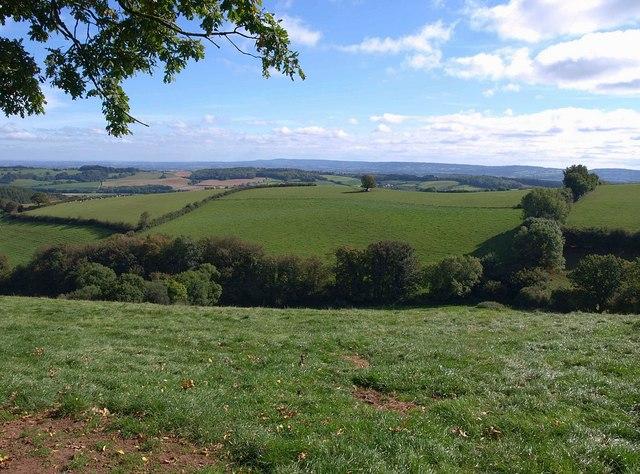 Valley below Bowering's Barn (4)