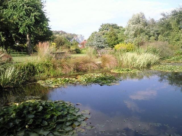 The Pines Garden, St Margaret's Bay