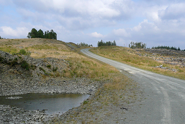 Forestry road and pool, Cnol Wen, Powys