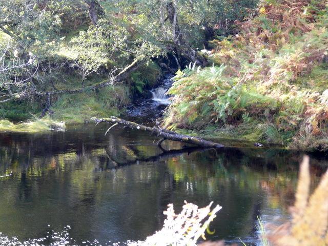 Allt Coire na Beithe at  River Farrar.