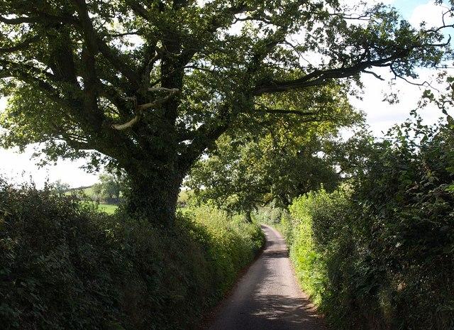 Pyncombe Lane