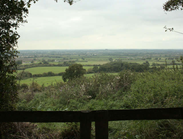 2009 : Scene  through a gap in the hedgerow