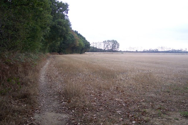 Footpath beside Clowes Wood