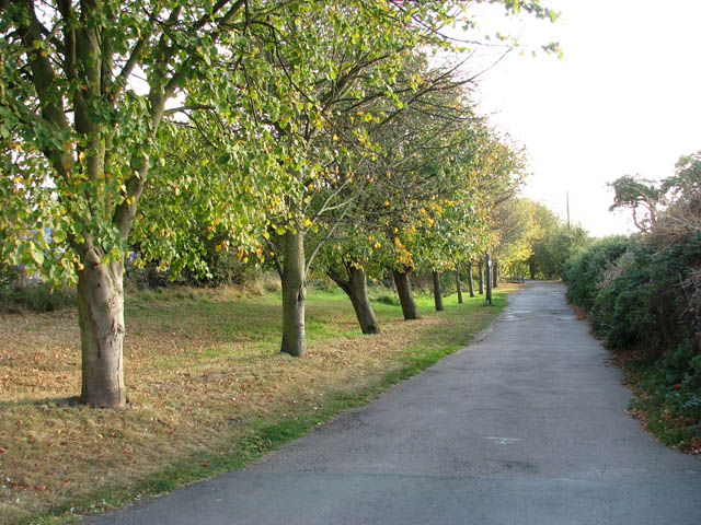 Footpath to the River Yare