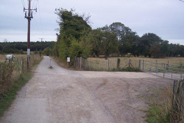 Crab and Winkle Way Cycle Path near Walnut Tree Farm