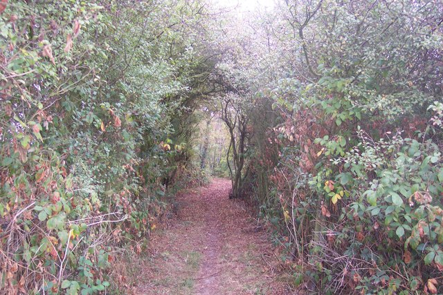 Byway to Amery Court