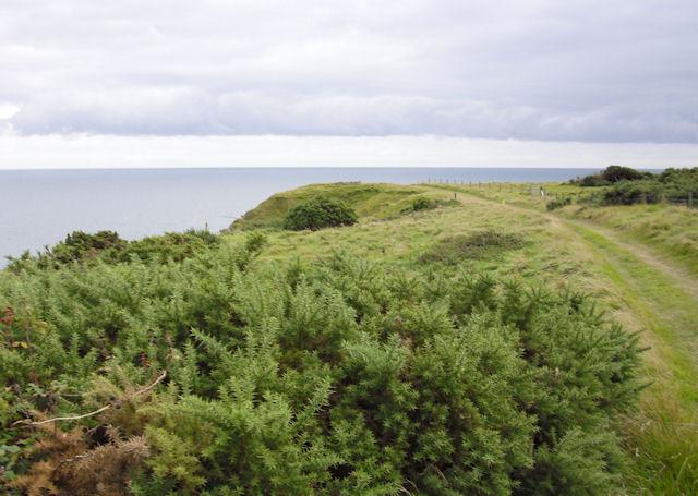South West Coast Path, above Mupe Rocks