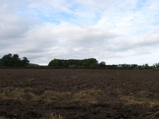 Kemps Meadow